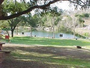 Lilac Oaks Campground - Valley Center CA