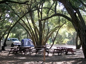 Ortega Oaks RV Park & Campground
