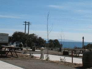 Ocean Mesa Campground - Santa Barbara CA