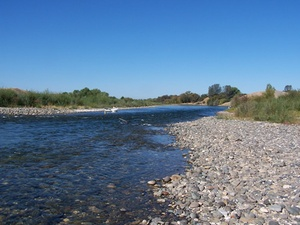 Freshwater Fishing from Sycamore Ranch RV Park - Browns Valley CA