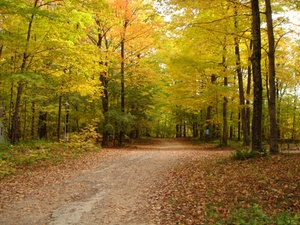 Egg Harbor Campground - Egg Harbor WI