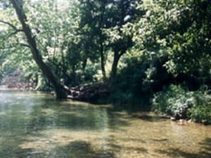 Mike's Hideaway - Eagle Rock MO