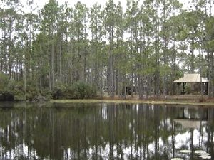 Pineglen RV Park - Panama City Beach FL