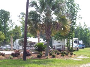Golden Isle RV Park - Brunswick GA