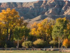 The Dubois Longhorn RV and Motel - Dubois WY