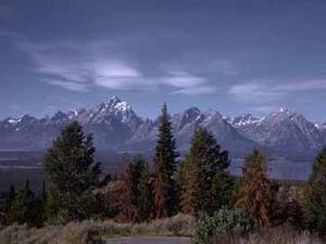Grand Teton Park RV Resort - Moran WY