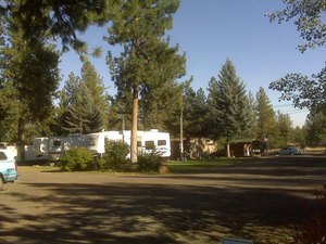 Peaceful Pines RV Park - Cheney WA