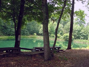 Cedar Mountain Campground - Culpeper VA