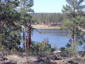 Fool Hollow Lake Recreation Area - Show Low AZ