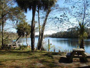 Yellow Jacket Campground - Old Town FL