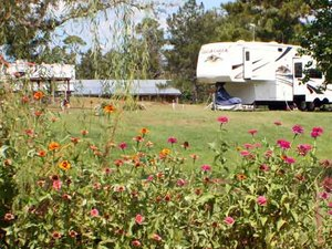 Clearwater RV Park And Campground - Carriere MS