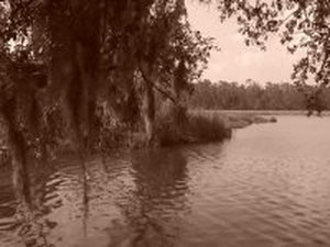 Indian Point RV Resort - Gautier MS