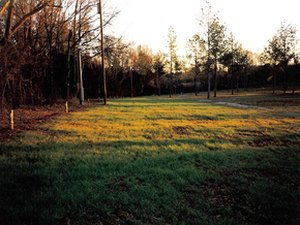Shadyoaks Campground and RV Park - Lincoln AL