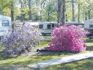 Punkin Park Campground