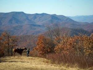 Purple Pony Cottage & Stables at Walnut Hollow R - Hayesville NC