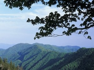 Trails End RV Park - Waynesville NC