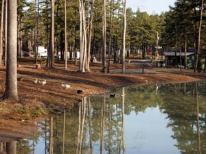Banjo Creek RV Resort and Campground - Asheboro NC