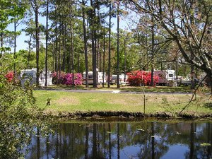 Whispering Pines Family Campground - Newport NC