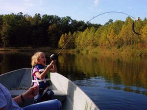 Cross Creek RV Park - Lake Ozark MO