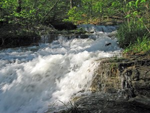 Tall Pines Campground - Branson MO