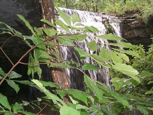 Table Rock Shores Campground - Kimberling City MO