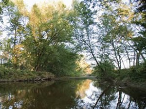 Garrisons RV Campground Resort - Steelville MO