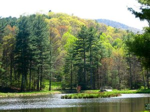Montebello Camping & Fishing Resort - Montebello VA