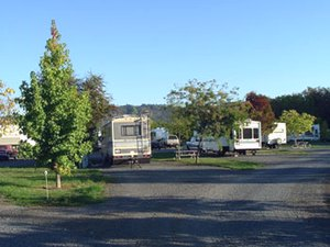 Umpqua Safari RV Park - Winston OR