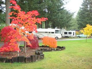American Heritage Campground - Olympia WA