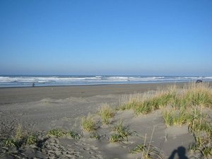 Anthony's Home Court RV Park & Cabins - Long Beach WA