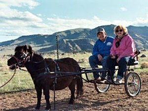 Buffalo KOA Kampground - Buffalo WY