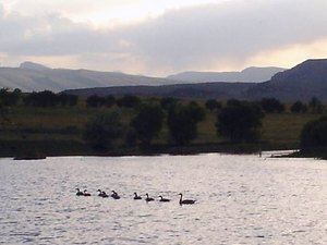 Twin Pines RV Park & Campground - Lander WY