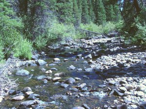 The Place - Saratoga WY