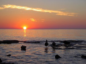 Sunset RV Park - Oswego NY