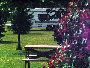 Driftwood Shores RV Park - Thompson MI