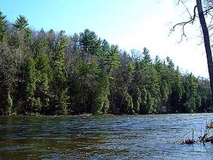 Muskegon River Camp & Canoe - Evart MI