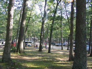 Oak Knoll Family Campground - Holton MI