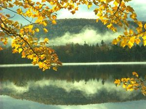 Lake George Campsites - Queensbury NY