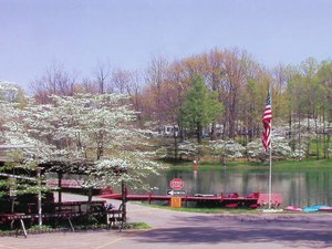 Dogwood Valley Family Campground - Mount Gilead OH