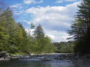 Twin River Campground - Bath NH