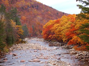 Pemi River Campground - Thornton NH