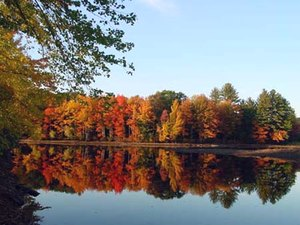Twin Oaks Campground - Allenstown NH