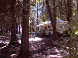 Timber Trail Campground - Algoma WI